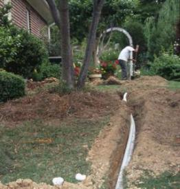 Our Cole Sprinkler Repair team is Your specialiist
